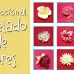 Introducción al modelado de flores